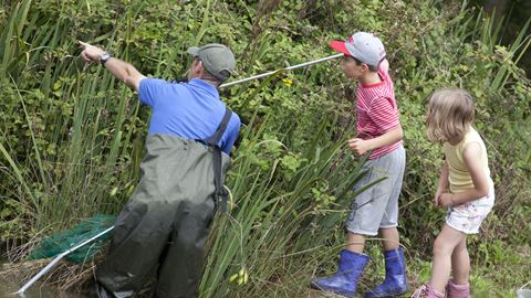 Ranger sessions are available for free in school holidays. Activities include bug hunts, pond dipping and rockpooling