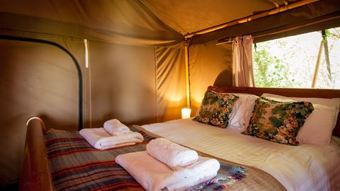 Luxurious Double in a Safari Tent