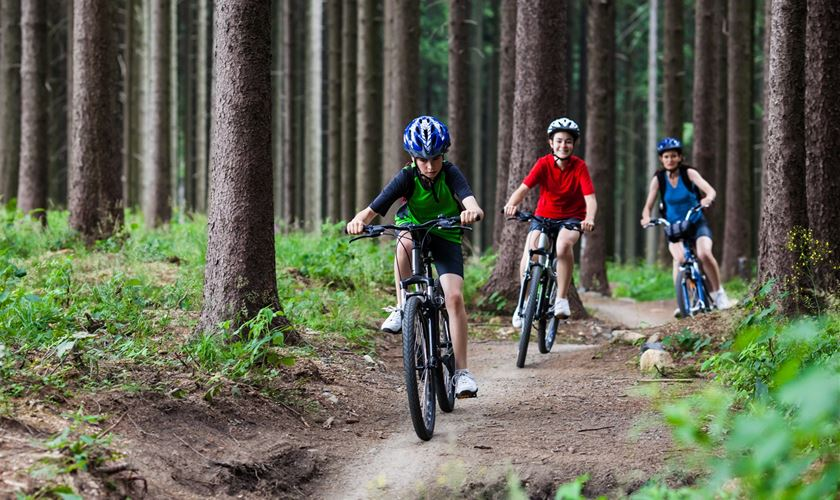 Our Guide To New Forest Cycle Hire