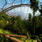 Tropical fun at the Eden Project