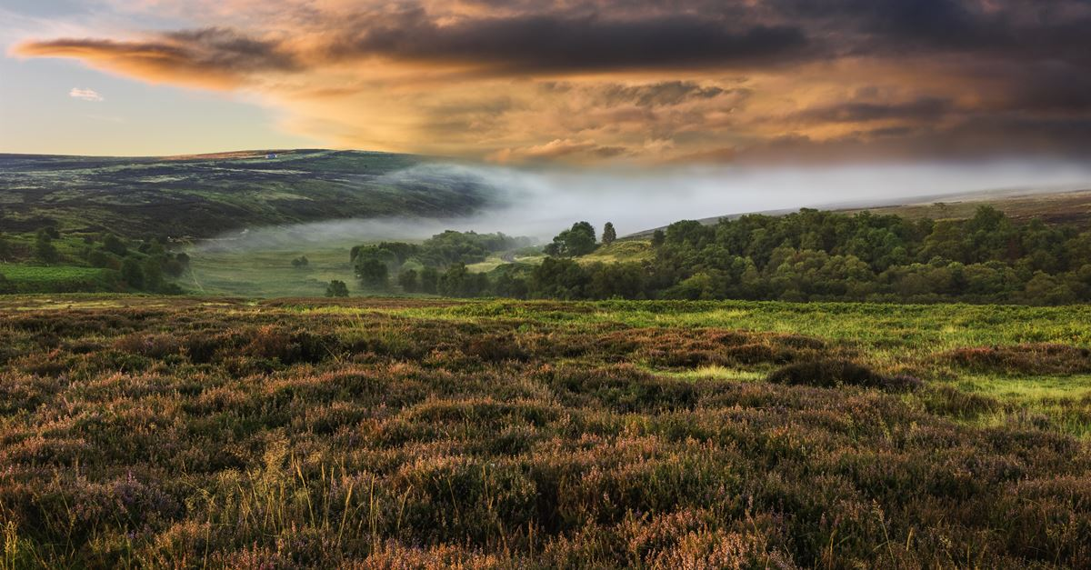 Campsites on the North York Moors